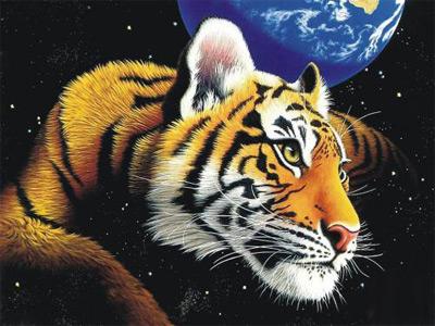 Новый 2010 год Тигра